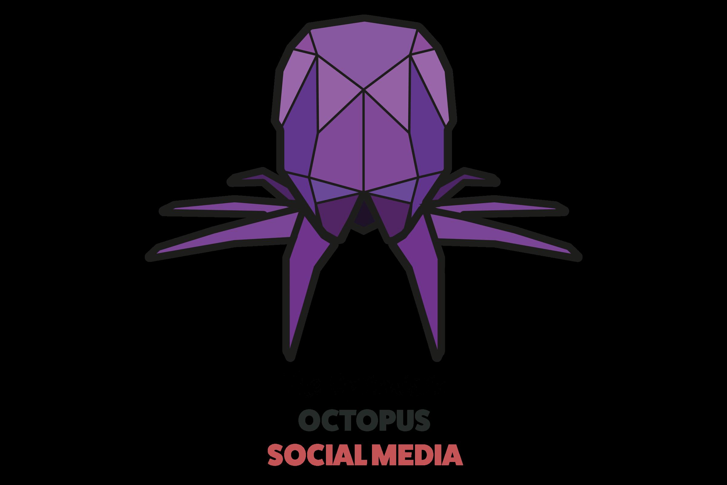 paper voice, oragami, web, graphic, logo, branding, design, ux, ui, newcastle upon tyne, octopus, squid, social media, social media management,